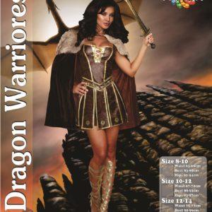 Dragon Warrioress | Costume Hire Brisbane | Camelot Costumes