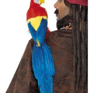 Shoulder Parrot
