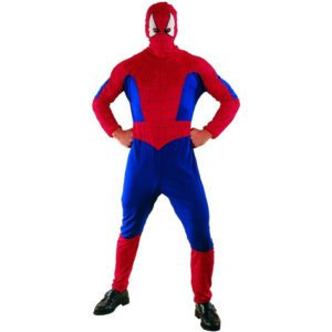 Spiderman | Costume Hire Brisbane | Camelot Costumes