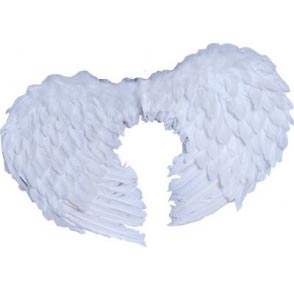 Angel Wings - White | Costume Hire Brisbane | Camelot Costumes