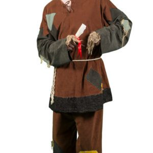 Wizard of Oz – Scarecrow | Costume Hire Brisbane | Camelot Costumes