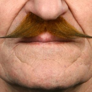 Brown pointed Mustache