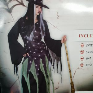 Spider Witch | Costume Hire Brisbane | Camelot Costumes