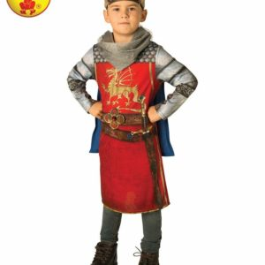 King Arthur | Costume Hire Brisbane | Camelot Costumes