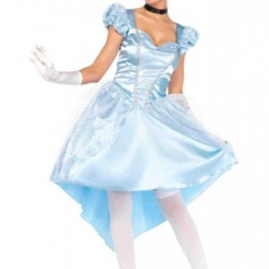 Enchanting Cinderella | Costume Hire Brisbane | Camelot Costumes