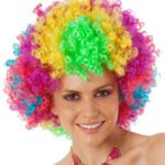 Rainbow Afro | Costume Hire Brisbane | Camelot Costumes